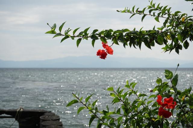 リオドゥルセの見所② 湖畔のレストラン フィンカエルパライソ