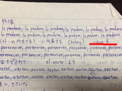 スペイン語動詞の不規則活用を補足