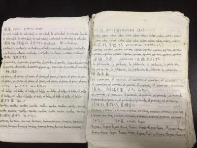 自作スペイン語単語帳例