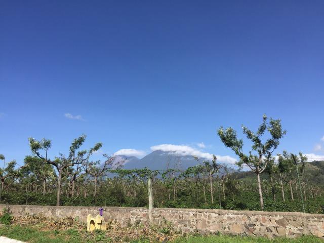 アンティグアマラソン写真(フエゴ山)