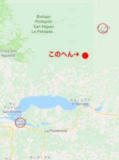 ティカル遺跡の地図3
