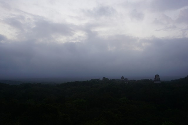 グアテマラのティカル遺跡観光5